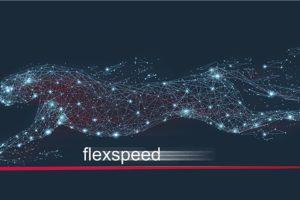 Rampf Flexspeed dispensing robot